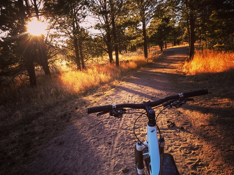 Experience beautiful golden light when you ride at dusk.