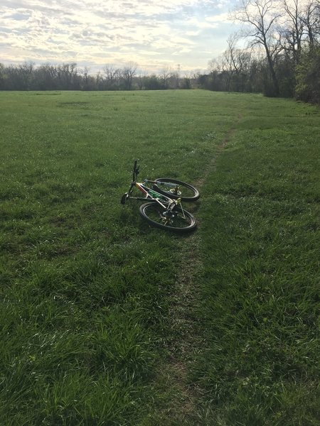 This is the grass field next to the start of the River Bend trails – the entrance is further up on the right.