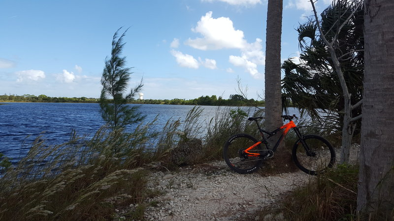 Enjoy great views of the water all along this trail.