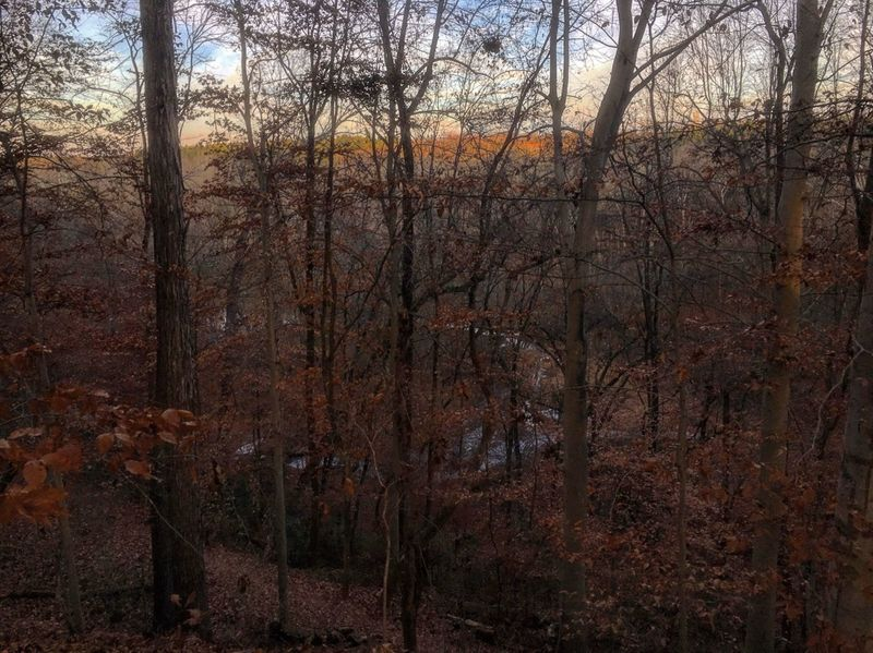 Long Creek peeks through the trees along the North Main Loop.