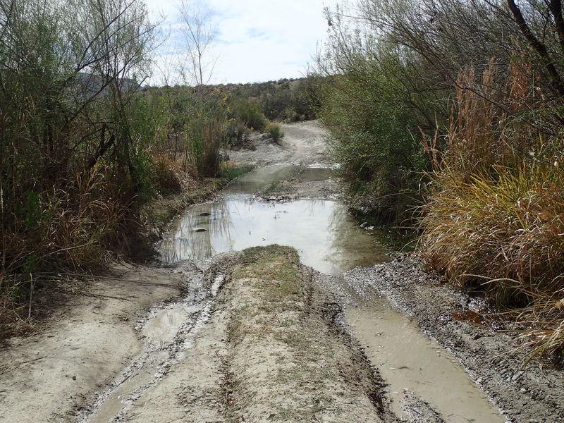 Beware of standing water near Glenn Spring on Black Gap Road.