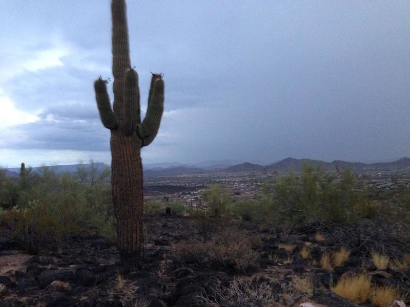 Rain brews over the valley from the trail.