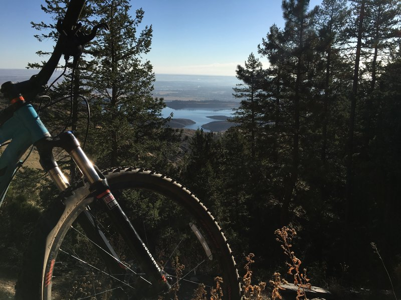 The scenery is awesome on upper Timber Trail, but you better get off your bike first before looking at it.