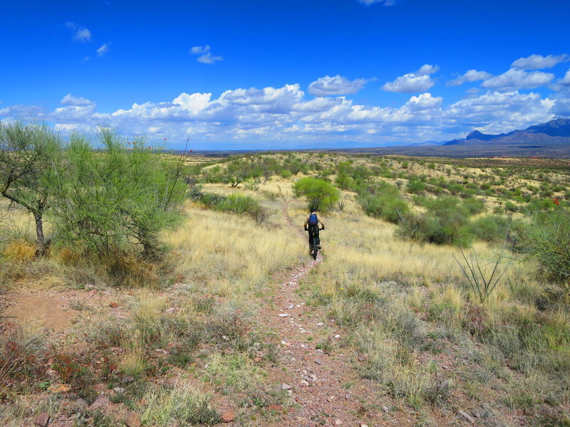 This is a glimpse at just some of the great singletrack out in the Tubac Shakur Loops.