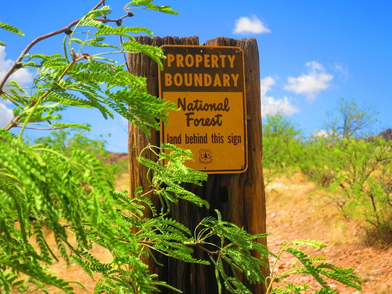 A Forest Service boundary marker is located on the trail heading west.