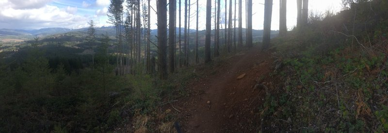 Heading south, you'll exit one of the clear cut areas to gorgeous views.