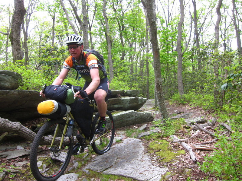 A rider cruises through Gambrill State Park in route to Michaux State Forest.