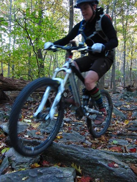 The IMBA Trail Care Crew joins us at Gambrill State Park!