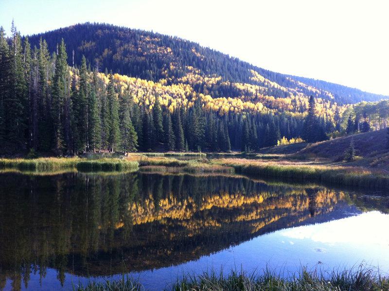 Lake Ridge Lakes in the fall.