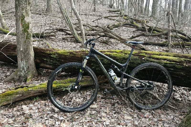When muddy conditions strike Deer Lake Park, the trails can be challenging in spots but fun in others.