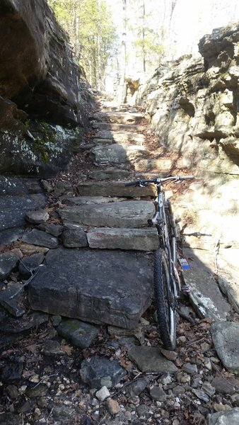 The Stairway to Heaven makes a fun technical challenge along the Scrappy Mountain Loop.