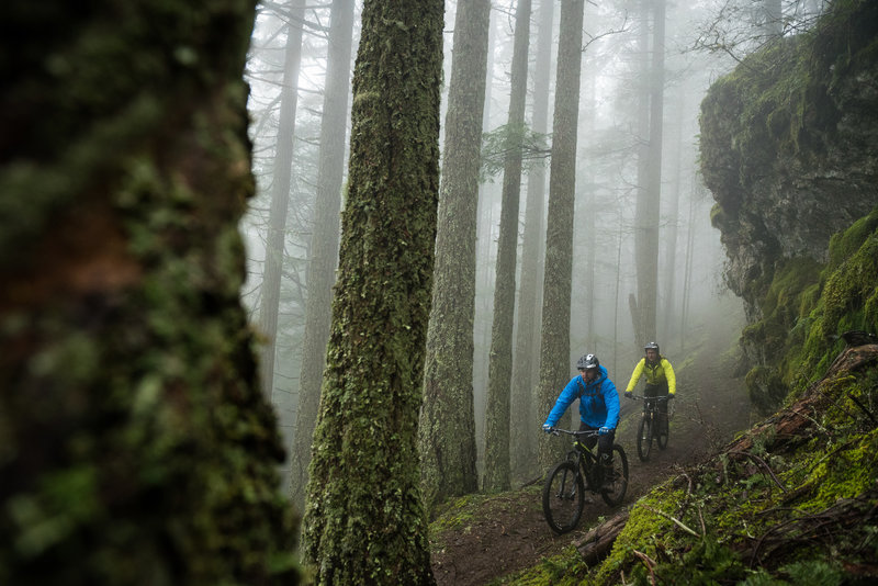 Fog, trees, and overhanging rocks made for an awesome afternoon ride.
