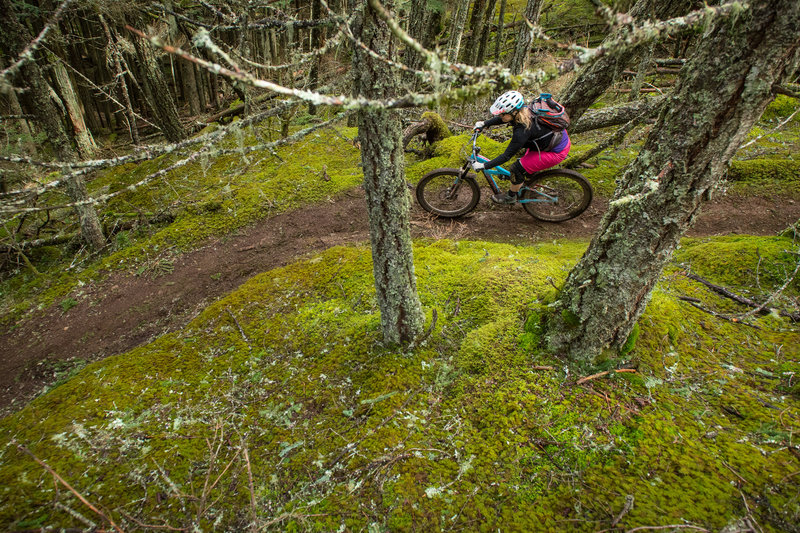 Riding through waves of moss is pretty surreal.