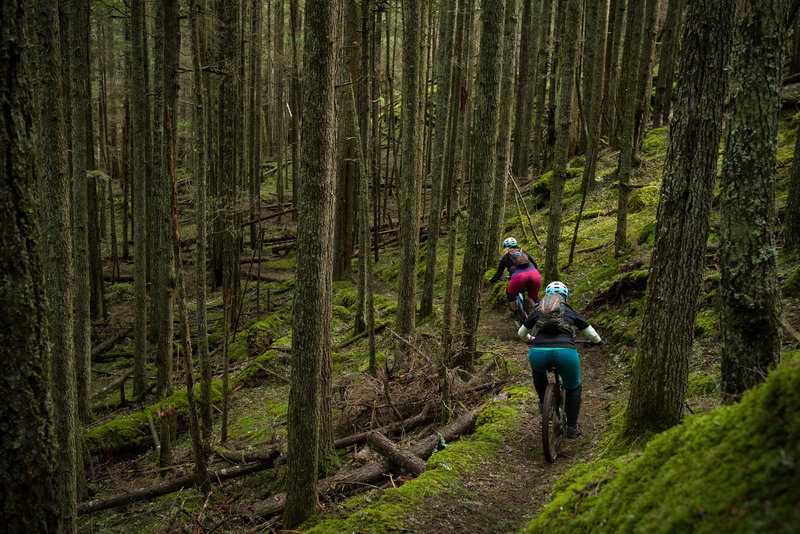 Riders dive into an immensely fun section on the North Trail on Orcas Island.