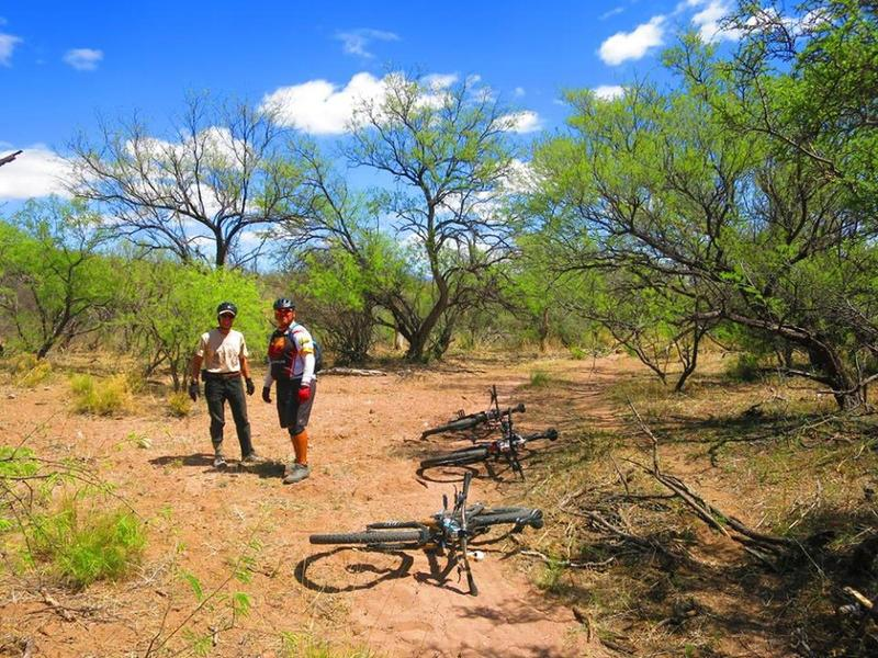 In the mesquite bosque, you'll find good patches of shade to avoid the sun and take a break.