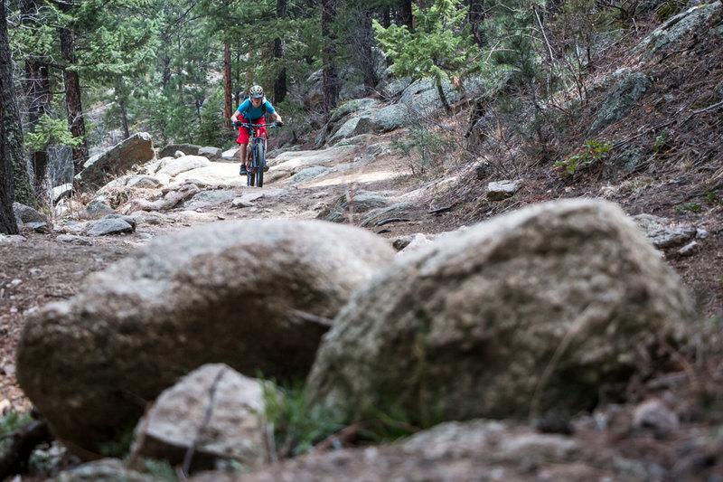 A rider gets after it on the Boulder Creek descent!