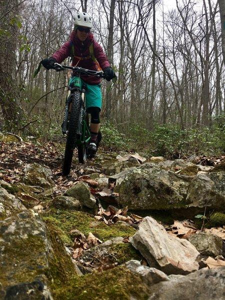 Rock gardens abound on lower Dry Fork Trail.