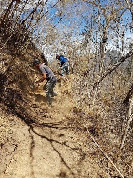 Cutting in a nice new section of trail.