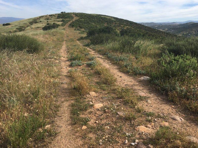 Track along the ridge up to Ramona Peak