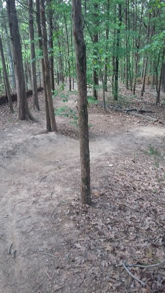 Smooth berms along the Cadron Settlement Trail.