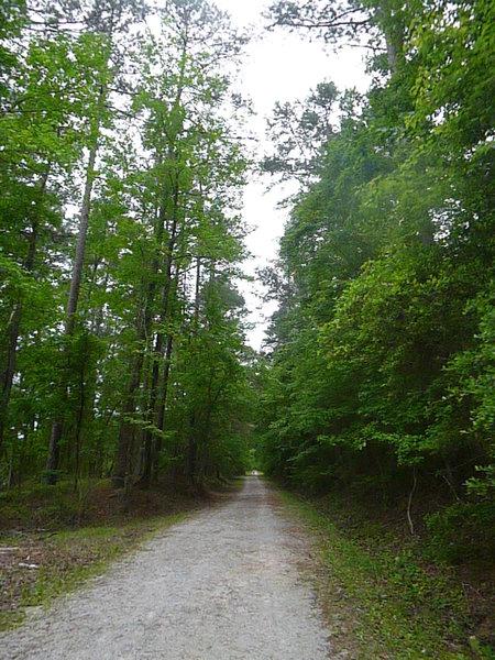 "Main gravel road around lake. ""Ring Road"""