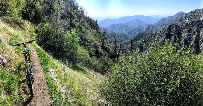 view toward the Angeles Crest Highway.
