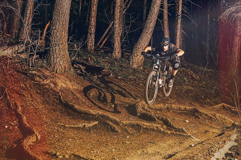 The ROOTS! The last section of Enchanted is full of big gnarly roots.