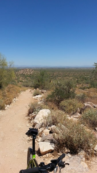 Looking east from Mesquite Trail about half a mile into the trail.