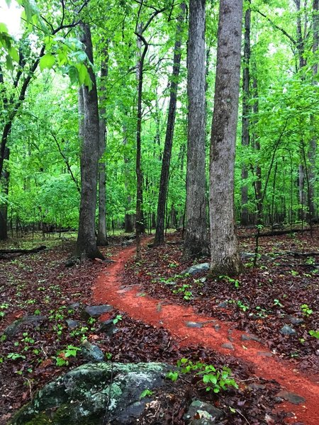There's a lot of red clay to be found on the Buckeye Loop.