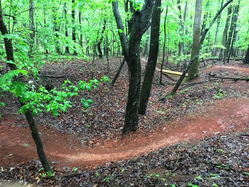 Smooth singletrack and rolling terrain makes for some great flowy riding.