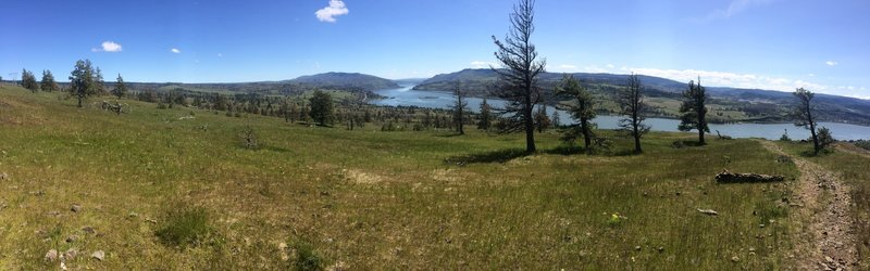 Gorgeous views of the Columbia River climbing up Rowland Wall Trail.