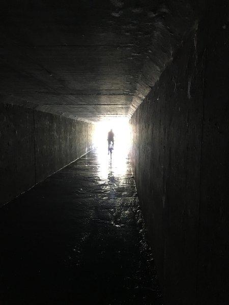 The tunnel to Sundog Ranch Trail.