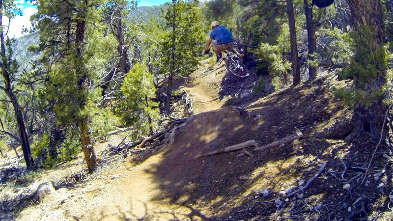 First jump on the trail, just before the ladder drops.