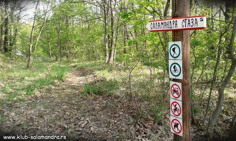 Signs Salamandra trail