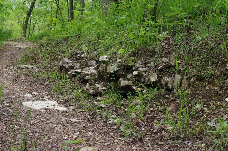 A section of limestone outcroppings on the side of the trail.