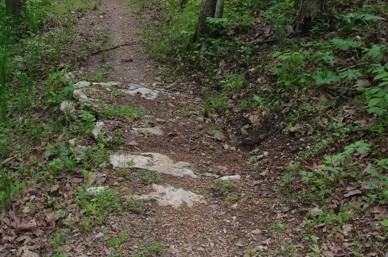 limestone rock armor in the tread helps prevent trail erosion.
