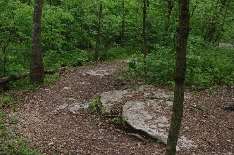 An off-camber switchback with some limestone rock for additional tech.