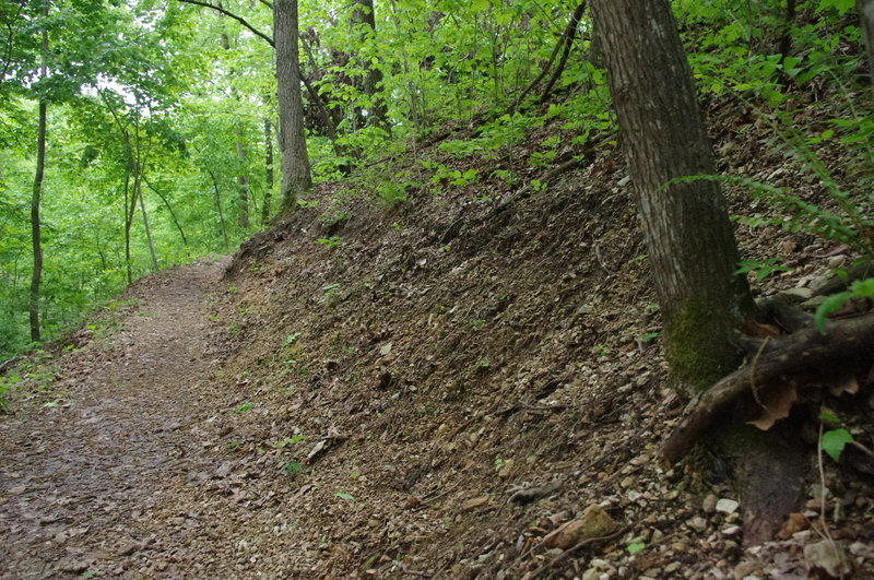 Watch for some soil creeping down off of the back slope along the trail.