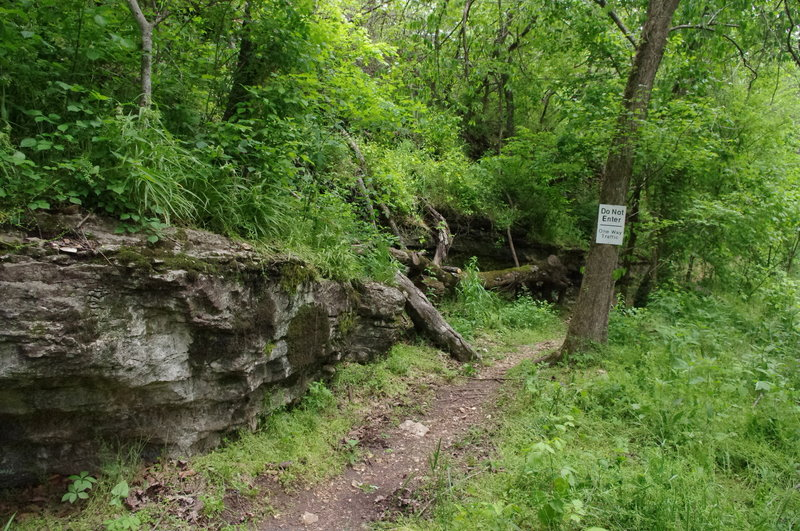 There's lots of big limestone as the trail meets the road.