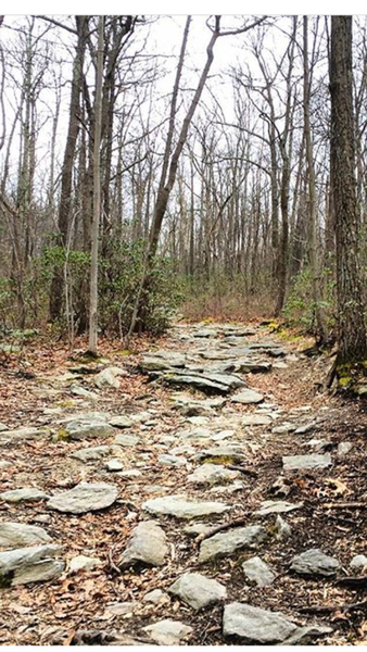 Rocks, rocks, and more rocks along the Fender trail.