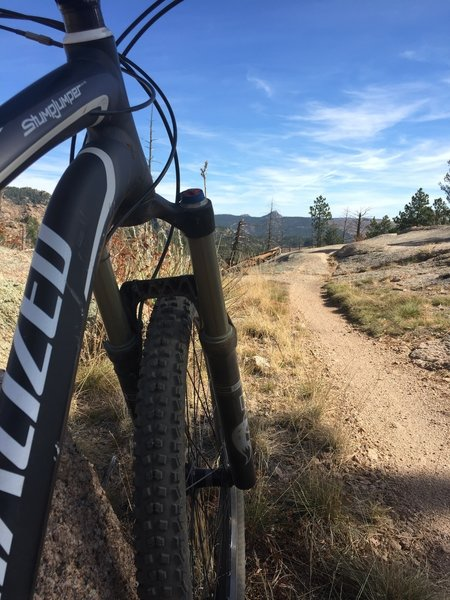 A narrow desert-like singletrack found on the Homestead Trail.
