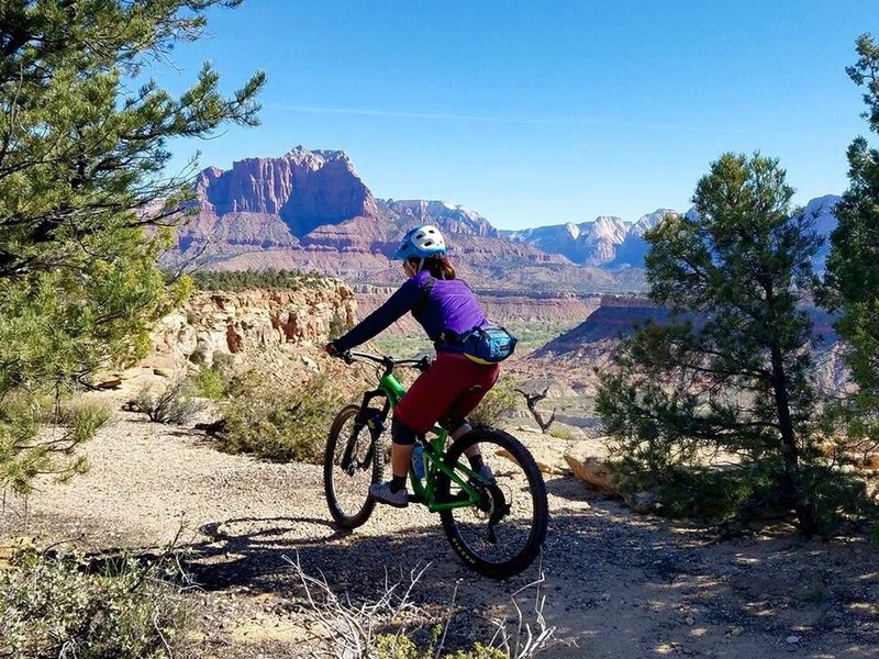 Views of Zion National Park abound on Wire Mesa.