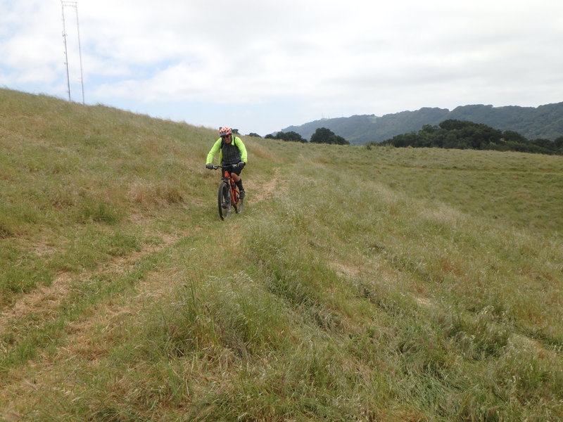 On the North Ridge Bypass,  a multi-use singletrack trail that bypasses a hill.