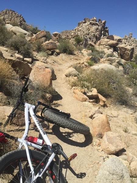 Experience a few fun climbs on Long May You Run.