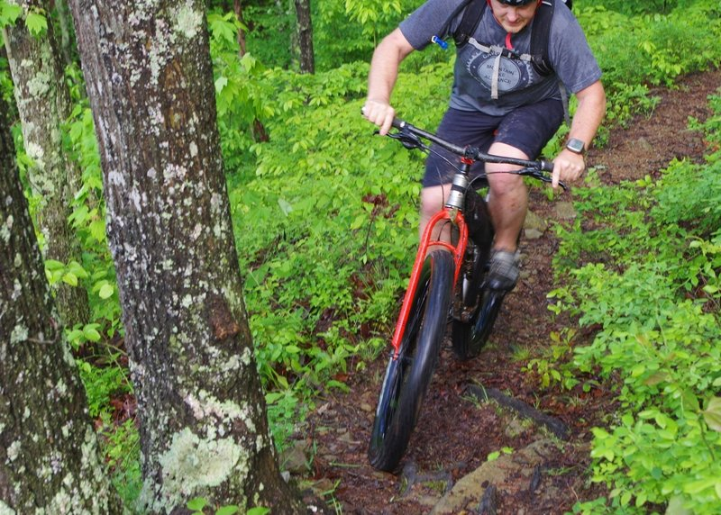 A rigid rider enjoys the Cave Run Trail in prime conditions.