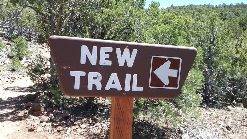 "I've been asked ""what is the name of the trail from the Green's Lake TH to Lava Flow?"" If signage means anything, it's ""New Trail."""