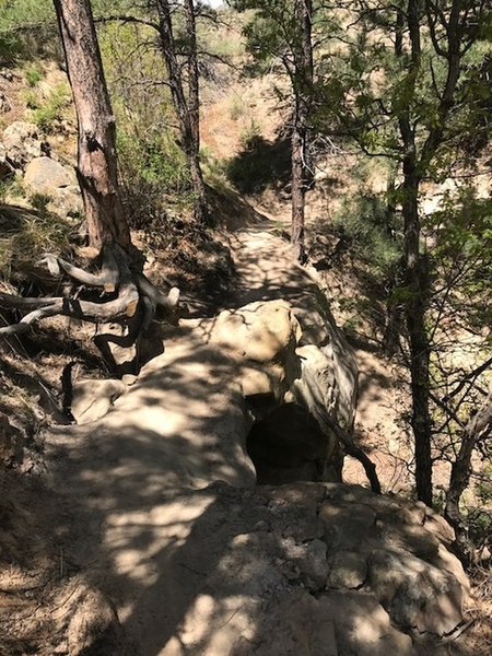 A technical rock bridge will give riders plenty to focus on.