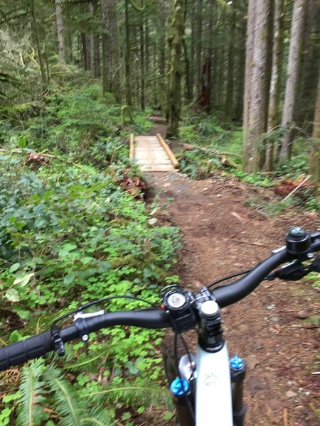 First of several awesome bridges crossing creeks and streams