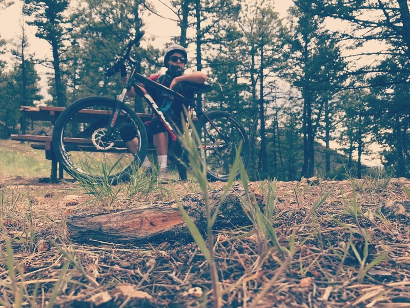 Took a picture of some grass after a 13 mile ride on South Dump Gulch.