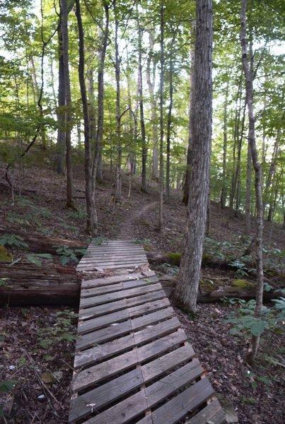 A tidy ladder bridge on Lodge View.